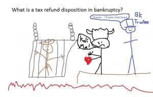 tax refund disposition